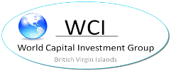 World Capital Investment Group